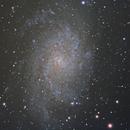 M33 - Triangulum Galaxy,                                nazarine