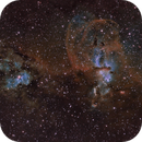 NGC3576 & NGC3603 the TorchBearer or Statue of Liberty nebula,                                Gary Plummer