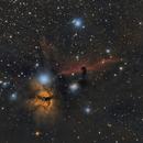The Horse Head Nebula,                                beta63