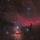Horsehead nebula IC434 B33 region HaRGB,                                Mario Gromke