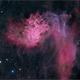 IC405 The Flaming Star Nebula,                                Randal Healey
