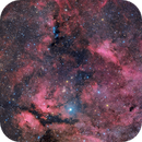 Sadr, Butterfly, NGC 6914 ... and more,                                Hytham