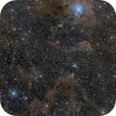Iris Nebula in a Dusty Field,                                Juan Lozano