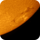 The Sun in Ha,                                Rob Parsons
