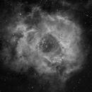The Rosette Nebula,                                Pete Geanacopulos