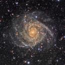 IC342 The Hidden Galaxy,                                Jeff Weiss