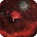 Orion Belt and Dust,                                Muhammad Ali