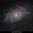 M33 in Triangulum,                                rigel123