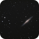 NGC 2683 - UFO Galaxy,                                Michael Hoppe