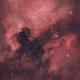 NGC7000 North America Nebula & IC5070 Pelican Nebula,                                Krishna Vinod