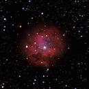 IC-5146 THE COCOON NEBULA,                                Alfredo Vargas