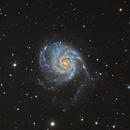 M101 Galaxy,                                Nathan Morgan (nm...