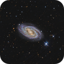 M 109 (NGC 3992),                                DetlefHartmann
