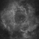 The Rosette Nebula - Hydrogen alpha,                                Eric Coles (coles44)