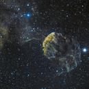 IC 443 - Jellyfish Nebula,                                Jared Holloway
