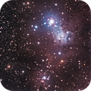 Cone Nebula (barely),                                Scott Badger
