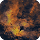 Half a Butterfly (IC 1318),                                Casey Good