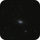 NGC 3521,                                Mark Sansom