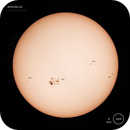 The Sun,                                ashley