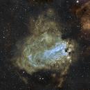 A Mini Study of the Birds: Messier 17 - The Swan Nebula,                                Timothy Martin & Nic Patridge