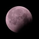 Lunar Eclipse 2019,                                Ryan Betts