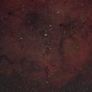 IC 1396 - Elephant's Trunk nebula,                                Tom914