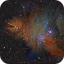 Cone and Fox fur nebulae and Christmas tree cluster in HST palette,                                Gordon Haynes