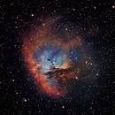 NGC 281 - The Pac-Man Nebula,                                Timothy Martin & Nic Patridge