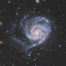 M101,                                Joel85