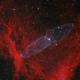 SH2-129 Flying bat nebula and Squid,                                Rhett Herring