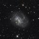 NGC 4395,                                Riedl Rudolf