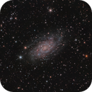 NGC 2403 The small Triangulum Galaxy. Second Try,                                Stephan Linhart