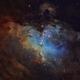 M 16 - The Eagle Nebula in Hubble colours,                                Ariel Cappelletti