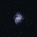 NGC 6946 - Fireworks Galaxy,                                Tim
