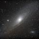 Andromeda / M31,                                Patrick Bosschaerts