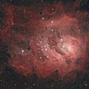 Deep sky first light VC200L,                                Richard Muhlack
