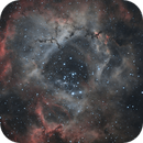 Rosette nebula w/ Optolong L-eNhance on ASI533MC Pro,                                Tom's Pics