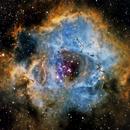 NGC2244,                                Kenneth Hoynes