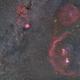 Orion to Monoceros Widefield,                                Niko Geisriegler