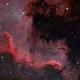 NGC 7000 - The Cygnus wall,                                Lorenzo Siciliano