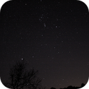 Orion,                                Alphamax