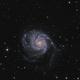 M101 LRGB,                                Vince