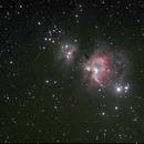 M42 the Orion Nebula,                                RonAdams