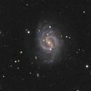 M 49 wide field,                                CCDMike