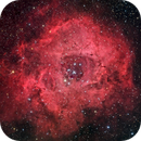 NGC 2244 and the Rosette Nebula,                                Peter