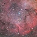 IC1396,                                Jeff Ball