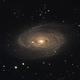 M81 M82,                                Ron Kramer