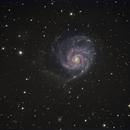 M101 The Pinwheel Galaxy,                                Aaron