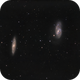 M65 and M66 in Leo,                                Roberto Botero