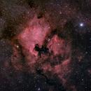NGC 7000 - IC 5070 (ASI 1600 GT + Nikon Lens),                                Marco Rapino